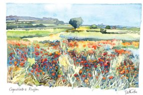 Coquelicots a Roujan